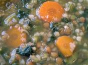 Soupe nourrissante lentilles, sarrasin légumes