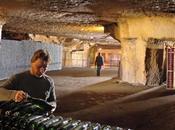 Caves Bailly-Lapierre Crémant Bourgogne