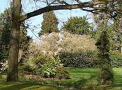 jardin Thabor Rennes Bretagne