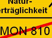 Maïs 810: l'Allemagne