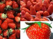 Ecologie comment l'alimentation redécouvre saisons...