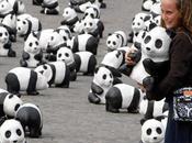 1600 pandas à Rome