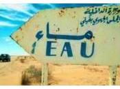 Panneaux insolites Maroc