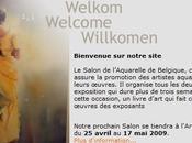 Salon l'aquarelle Belgique 11ème biennale actuellement Namur aussi Tintin festival