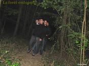 Dans bois