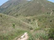 Magnifique Lantau Peak