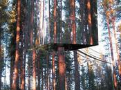 Harads Tree Hotel: luxe d'une cabane dans arbres Suède