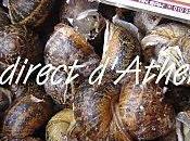 RETOUR MARCHE CRETOIS escargots