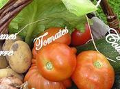 Assortiment légumes d'été flan courgette, brochette grenailles tomate provençale