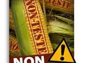 maïs SmartStax sauver forêts!