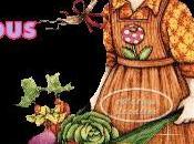 Bonnes idees conseils pour tomate Blog Djouza