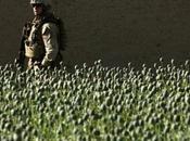 Karzai, trafic drogue