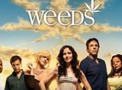 Séries phénomène Weeds