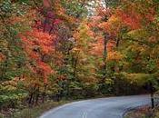 blues d'automne...