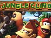 C'est jungle Nintendo