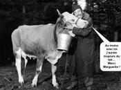 Grève lait .... c'est parti dans durée