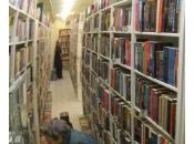 L'emprunt gratuit, pourquoi acheter livres bibliothèque