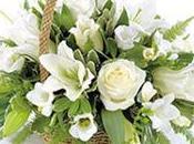 """Découvrez Nouvelle Collection Compositions Bouquets """"FLORACLIC.FR"""""""