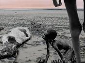 changement climatique menace sanitaire siècle