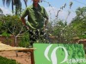 Lucas Madagascar avec Pranarôm plants Ravintsara sont arrivés