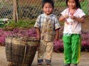 Bilan Laos