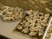 transhumance huîtres (bis)...