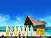 Bali Surf Shop