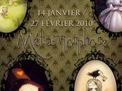 Exposition Métamorphose