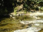 rivière village (Fernando Pessoa)