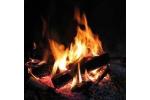 Réutiliser cendres bois cheminée