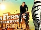 ferme célébrités Afrique