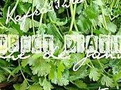 RETOUR MARCHE vert