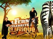 Ferme Célébrités Afrique prime soir vendredi février 2010