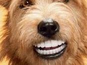 Pedigree/ Smiley Dog.