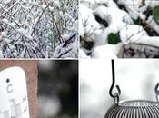 Réchauffer l'hiver…