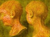 jeudis Bocata États conscience, méditations imagerie cérébrale recherches aspects philosophiques Pierre Etevenon