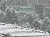 météo Côte ganses légères.... légères comme flocon neige