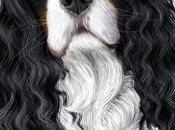 Portrait animalier Cavalier King Charles tricolore blahblah