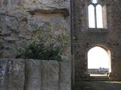Puisque seigles ondulent près ruines (Seamus Heaney)