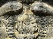 Douze aphorismes Shiva