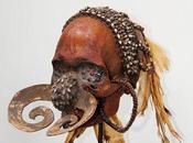 Crânes Asmat