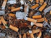 mégots sont mauvais pour l'environnement!