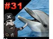 L'apéro Captain cache trou dauphin amoureux