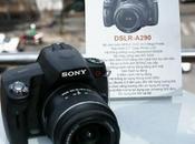 Rumeurs boitiers Nikon Sony préparation