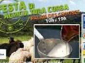 Fête l'Agriculture Corse d'aujourd'hui dimanche Ajaccio programme jour