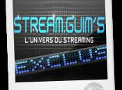 Streamguims: streaming