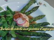 """Salade saison """"Mâche Asperges vertes"""""""