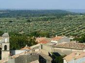 L'or vert Alpilles, l'autre l'huile d'olive