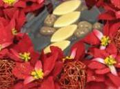 Fleurs chocolats Noël