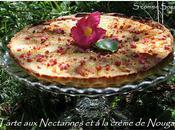Tarte Nectarines crème Nougat
